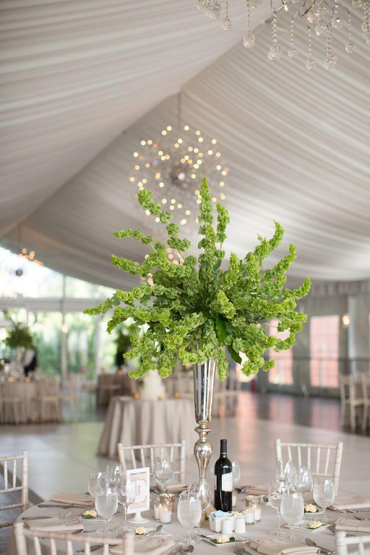March Flower Spotlight Bells Of Ireland Wedding Event Florist